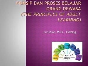 Cut Sarah M Psi Psikolog 1 2 3