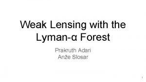 Weak Lensing with the Lyman Forest Prakruth Adari