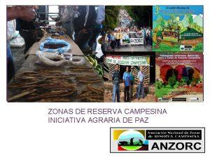 ZONAS DE RESERVA CAMPESINA INICIATIVA AGRARIA DE PAZ