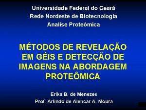 Universidade Federal do Cear Rede Nordeste de Biotecnologia