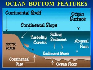 OCEAN BOTTOM FEATURES OCEAN BOTTOM FEATURES TOPOGRAPHIC FEATURES