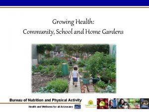 Growing Health Community School and Home Gardens Bureau