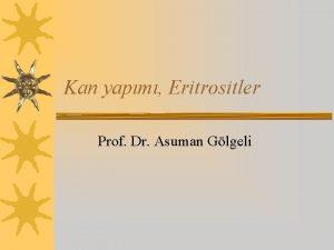 Kan yapm Eritrositler Prof Dr Asuman Glgeli hematopoez