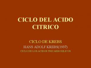 CICLO DEL ACIDO CITRICO CICLO DE KREBS HANS