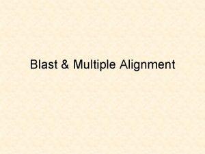 Blast Multiple Alignment Scoring Alignments Quality 10match 1mismatch
