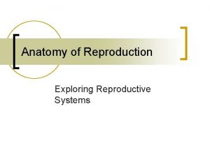 Anatomy of Reproduction Exploring Reproductive Systems Male Reproductive
