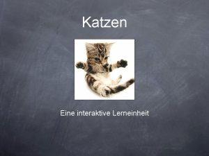 Katzen Eine interaktive Lerneinheit Erklrung zu den Hyperlinks