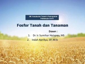 MK Kesuburan Tanah Pemupukan Pertemuan KeVI Fosfor Tanah