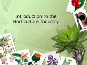 Introduction to the Horticulture Industry What is Horticulture