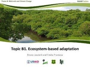Topic B 1 Ecosystembased adaptation Bruno Locatelli and