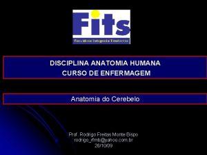 DISCIPLINA ANATOMIA HUMANA CURSO DE ENFERMAGEM Anatomia do