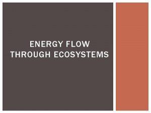 ENERGY FLOW THROUGH ECOSYSTEMS ENERGY FLOW THROUGH ECOSYSTEMS