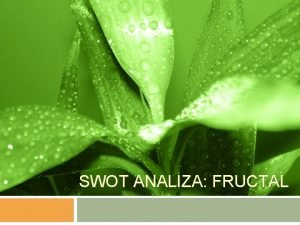 SWOT ANALIZA FRUCTAL Vsebina predstavitve Predstavitev podjetja Predstavitev