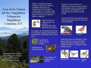 Aves de la Cuenca del Ro Magdalena Delegacin