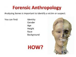 Forensic Anthropology Analyzing bones is important to identify