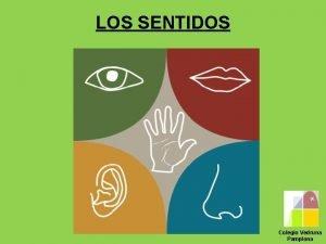 LOS SENTIDOS Colegio Vedruna Pamplona PARA VER CORRECTAMENTE