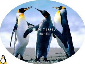HR2017 1834 A Bori II Professor dr juris