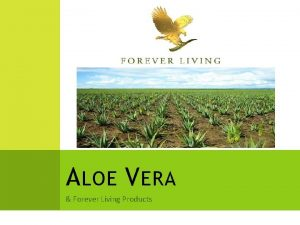 A LOE V ERA Forever Living Products O