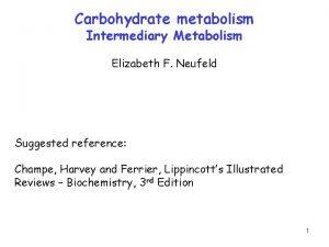 Carbohydrate metabolism Intermediary Metabolism Elizabeth F Neufeld Suggested