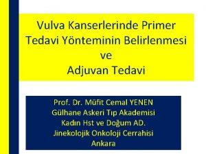 Vulva Kanserlerinde Primer Tedavi Ynteminin Belirlenmesi ve Adjuvan