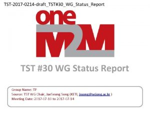 TST2017 0214 draftTST30WGStatusReport TST 30 WG Status Report