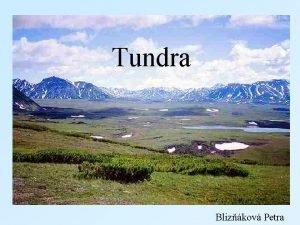 Tundra Blizkov Petra Tundra Oteven a pust krajina
