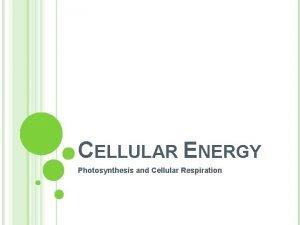 CELLULAR ENERGY Photosynthesis and Cellular Respiration MAIN IDEA