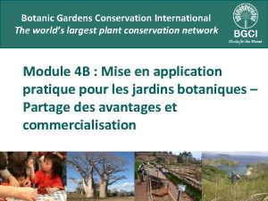 Botanic Gardens Conservation International The worlds largest plant