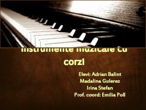 Instrumente muzicale cu corzi Elevi Adrian Balint Madalina