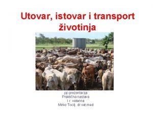 Utovar istovar i transport ivotinja pp prezentacija Praktina