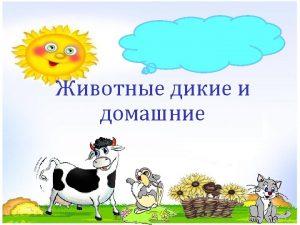http 900 igr netDetskieprezentatsiibiologiyaPrezentatsiipobiologii html http lisyonok ucoz