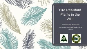 Fire Resistant Plants in the WUI Kris Babbs