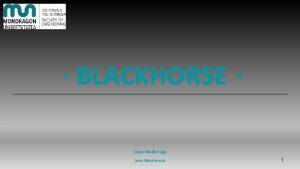 BLACKHORSE Kepa Madariaga Josu Manterola 1 1 Introduccin