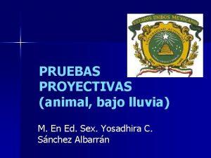 PRUEBAS PROYECTIVAS animal bajo lluvia M En Ed