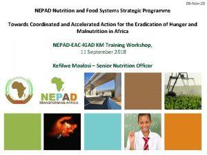 05 Nov20 NEPAD Nutrition and Food Systems Strategic