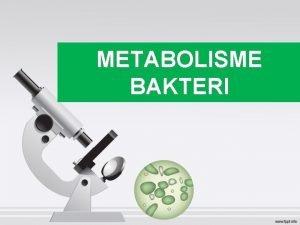 METABOLISME BAKTERI Metabolism Bioenergetics Catalysis Enzymes Oxidation Reduction