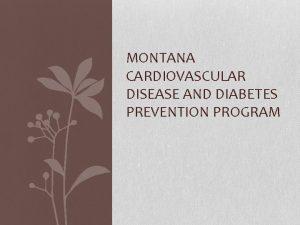 MONTANA CARDIOVASCULAR DISEASE AND DIABETES PREVENTION PROGRAM Diabetes