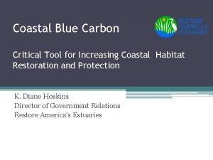 Coastal Blue Carbon Critical Tool for Increasing Coastal