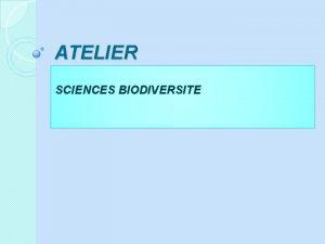 ATELIER SCIENCES BIODIVERSITE Mon HERBIER ECOLOGIQUE qui respecte
