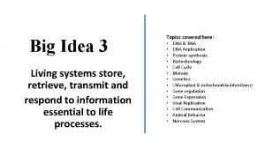 Big Idea 3 Living systems store retrieve transmit