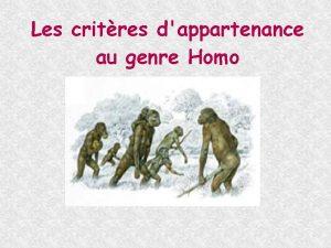 Les critres dappartenance au genre Homo Parmi les