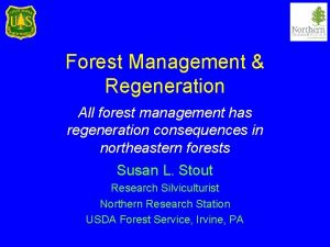 Forest Management Regeneration All forest management has regeneration