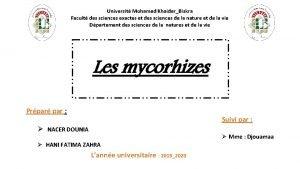 Universit Mohamed KhaiderBiskra Facult des sciences exactes et