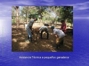 Asistencia Tcnica a pequeos ganaderos Capacitacin a pequeos