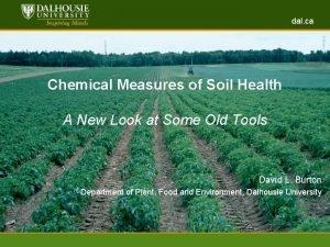 dal ca www dal ca Chemical Measures of
