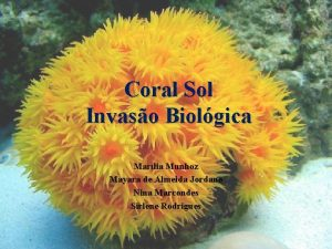 Coral Sol Invaso Biolgica Marlia Munhoz Mayara de