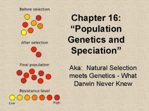 Chapter 16 Population Genetics and Speciation Aka Natural