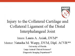 Injury to the Collateral Cartilage and Collateral Ligament