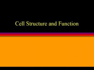 Cell Structure and Function Cell Structure and Function
