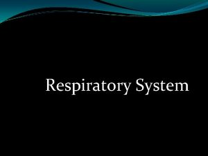 Respiratory System Function of the Respiratory System Move